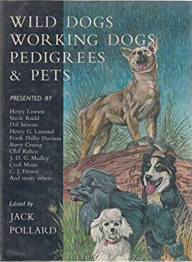 Wild Dogs Working Dogs Pedigrees & Pets