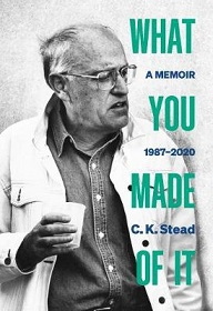What You Made of It - A Memoir 1987-2020