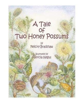 A Tale of Two Honey Possums