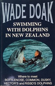 Swimming with Dolphins in New Zealand - Where to Meet Bottlenose, Common, Dusky, Hector's and Risso's Dolphins