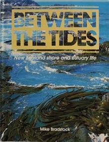 Between the Tides - New Zealand Shore and Estuary Life