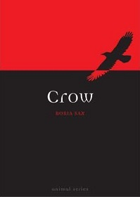 Crow - Animal Series