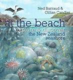 At the Beach - Explore and Discover the New Zealand Seashore