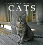 An Illustrated Guide to Cats
