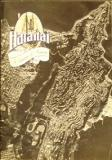 Hataitai - A Collection of Memories