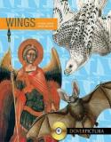 Wings - Dover Pictura Electronic Clip Art