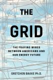 The Grid - The Fraying Wires Between Americans and Our Energy Future