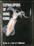 Cephalopods of Hong Kong