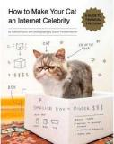 How to Make Your Cat an Internet Celebrity - A Guide to Financial Freedom