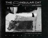 The Singular Cat  - Photographs