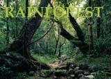 Rainforests: A Panoramic Vision