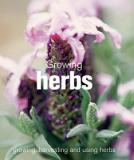 Growing Herbs - Growing, Harvesting, and Using Herbs