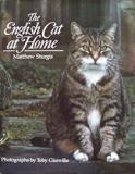 The English Cat at Home