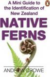 A Mini Guide to the Identification of New Zealand Native Ferns