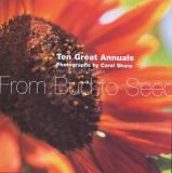 From Bud to Seed - Great Annuals
